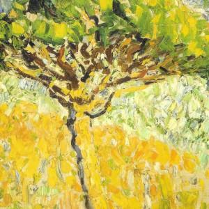 parasolden-in-zomerzon-1906