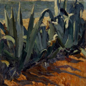 agaves-met-kustlijn-1906